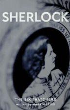 The Six Thatchers  (Sherlock x Reader) by LayceJ25