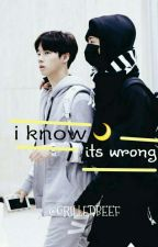 I know its Wrong (Binhwan) by grilledbeef