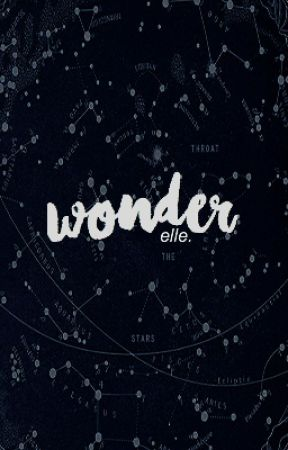 Wonder ▸ Willet by dreamydisney