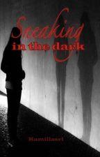 Sneaking in the dark  (student/teacher relationship) by kamillasrl