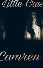 A Little Crush  ( Camren ) by Laryjauregui27