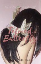 Kathryn's Diary (A KathNiel Story) by littlerainwriter