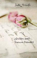 Notas Secretas. ¿Quien eres?/ Shawn Mendes by juli-trinfi