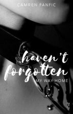 Haven't Forgotten My Way Home (Camren) by justaloseryaknow
