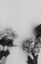 Phan One Shots by kodiasde