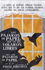 Los pájaros de papel que un día volaron libres  by pauli_idhunita