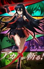 Akame Ga Kill x Male Reader by Tinytoast1