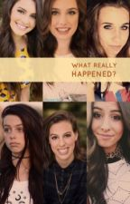 What Really Happened? (A Lauren and Dani Cimorelli Story) by twinny22