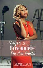Prisonnière de son destin Tom 2 by lemarqueur