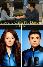 Bree and Kaz: The Danger Of Us by secretpotterhead34