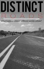 Distinct Roads by thewildchildxo