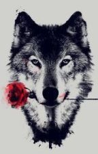 Philosophies and Theories of a lone wolf by Austiplier