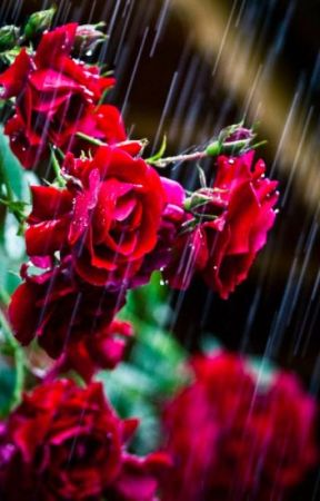 It Was Raining by Blood_Splatter_Queen