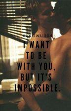 Я хочу быть с тобой, но это не возможно by SanuWuRen