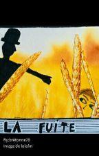 La Fuite by bretonne29