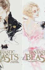 Fantastic Beasts  by Frajo04