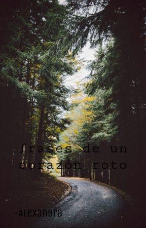 Frases De Un Corazon Roto Sin Ti Yo No Wattpad