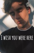 i wish you were here// ts + cf by audibleconnor