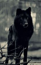 Big Black Wolf by kochamzelki112