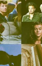 The beast and the curly haired one. -Larry Stylinson by harryandlouisingucci