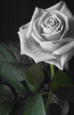 Rosas y eriales by Althayos