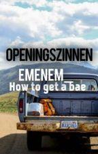 Openingszinnen by EmEnEm_