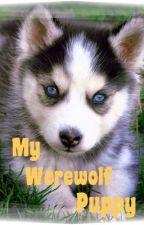 My werewolf puppy?!?!?!??  {EDITING} by Breebrezzy12