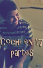Cochi en 17 partes by Sophia_SG