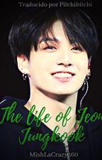 The Life Of Jeon Jungkook (Traducida) (Jikook) by PitchiBitchi
