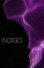 INDIGO ACTIVITY ( Kisah Nyata ) by kareem22
