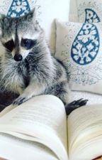 Cuestionario literario by MapacheFisgon