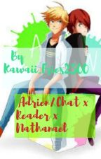 Jealous? (Adrien/Chat x Reader x Nathnael/Evillistrator. Maybe. Continued by Salty_Pancakes