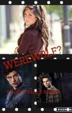 Werewolf? {Stiles Stilinski, Isaac Lahey, Scott McCall X Reader by LaddersPhanatic