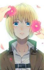 Armin X Reader by zeparose