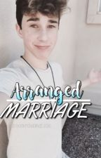 arranged marriage | hbr [ ✓ ] by waves-of-sorrow