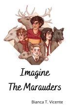 Imagine the Marauders by BiancaVicente2