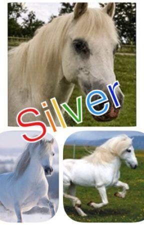 Menaigh Splash o' Silver und Vanessa  by lesvan