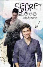 Secret Love (Malec Au FF) by Saradreamland