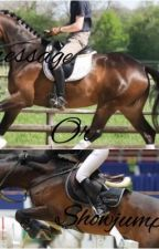 Dressage or showjumping? by dressagegirlz