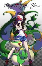 Why I Love you... (Ash Ketchum x Reader) by abigail1738_