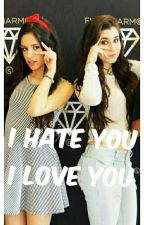 I Hate You I Love You  by Camren12JC