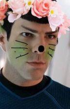 Spock is so KAWWWWAAAAIIIII by CeramicSky