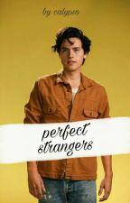 perfect strangers » ziam by recordpayne