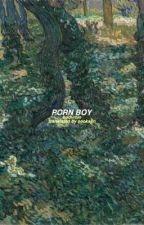 porn boy {eng translation} by seoksjin