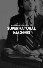 Supernatural Imagines  by notlosechesters
