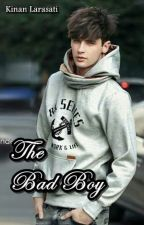 The Bad Boy #Series 1 Before The Marriage (Complete) by indrianisonaris