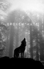 Broken Mate by TurtleCat5