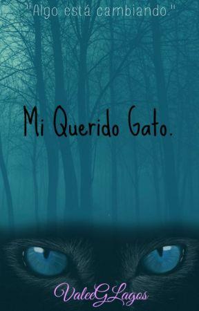 Mi querido Gato  by ValeeGLagos