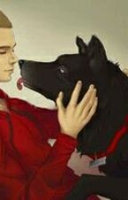 Perro-lobo[One-Shot Sterek] by RoMiranda0