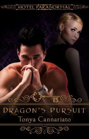 Dragon's Pursuit by tmycann